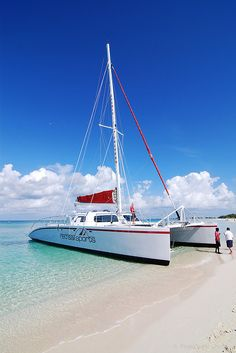Cayman Catamaran - Grand Cayman  Best thing we ever did on our honeymoon!