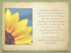 ▶ The Sunflower-- A Parable of Life - YouTube
