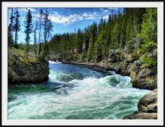 rafting in the Yellowstone river