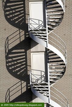 spiral staircase looking like a double helix with its shadow