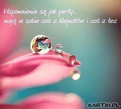 wspomnienia_sa_jak_p_df_big.jpg (374×339)