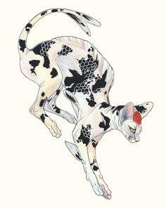 Koi Sphynx Tancho Sanke, an art print by Kristina Wiltse Animal Art Prints, Animal Drawings, Art Drawings, Sphynx Cat Tattoo, Arte Lowbrow, Drawings Pinterest, 1 Tattoo, Psychedelic Art, Art Sketchbook