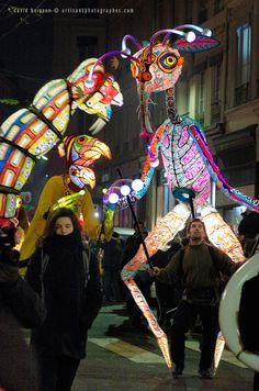 Marionnettes lumineuses (Allebrilles) de la compagnie Les Grandes Personnes