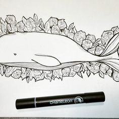 Loving this Whale and Roses illustration created by @zivi_illustrator with their Chameleon Detail Pen. #ink #illustration #illustrator #artist #illustrate #pen #chameleonpens #whaletattoo #roses #oldschool #draw #drawing #draw #artist #blackink #tattoo #animal #creature