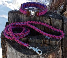 Rope Dog Collar and Matching leash 550 Paracord Sanctified Weave Dog Collar Custom Colors