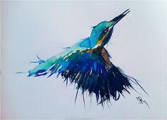 Jégmadár(Kingfisher)