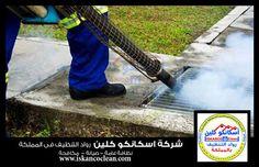 شركة اسكانكو كلين لمكافحة الحشرات في الرياض