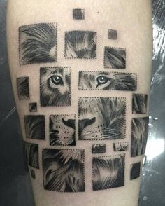 Desempenho e design em um única máquina de tatuar. Descubra as possibilidades com LACEnano ☆☆☆☆☆ Loja física: Rua Almirante Lobo, 289 - Ipiranga - São Paulo - SP  De segunda a sexta das 8:30 as 17 horas. Telefone (11) 4508-6880 Whatsapp (11) 98673-8821  www.adinternacional.com.br  @Regrann from @fuieuoriginal -  #tattoo #tattooart #tattooartist #tattooing #tattooed #blackandgrey #hachura #dotwork #lion #fuieuoriginal #zumba13 #lacenano