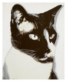 Did you know that Andy Warhol was a huge cat lover? He and his mother, Julia Warhola, both loved cats and had several of their own, all named Sam except for one called Hester. In the before Warhol became famous. Andy Warhol Pop Art, Jasper Johns, Illustrations, Illustration Art, Gatos Cats, Cat Colors, White Cats, Siamese Cats, Ragdoll Kittens