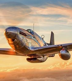 Photos that inspire: Photo Jet Fighter Pilot, Fighter Jets, Ww2 Aircraft, Fighter Aircraft, Military Helicopter, Military Aircraft, Propeller Plane, Vintage Mustang, P51 Mustang