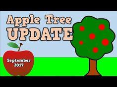 Apple Tree Update- 9.20.17- Harry Kindergarten checks on his apple trees!