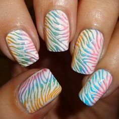 MoYou Nails Plate 20 - #wendysdelights #nails #nailart #colorfulnailstamp #rainbow #zebrastripe - bellashoot.com