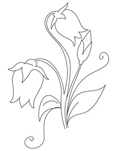 Campanula flowers coloring page, Embroidery Motifs, Hand Embroidery Designs, Applique Patterns, Flower Patterns, Illustration Blume, Camping Crafts, Floral Illustrations, Fabric Painting, Easy Drawings