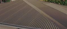 Best Colorbond Basalt Roof Garage Door Rainwater Tanks And 400 x 300