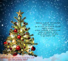 Vesel božič ter srečno novo leto 2015 - Merry Christmas and Happy New Year 2015!