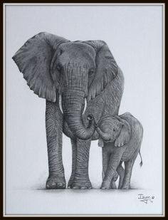 Mother and Baby Elephant Tattoos - Bing Images