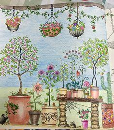 #secretgarden #secretgardencoloringbook #jardimsecreto #johannabasford #artecomterapia #arteterapia #vasos #folhas #colorindo #lápisdecor #coresnopapel #livrodecolorir