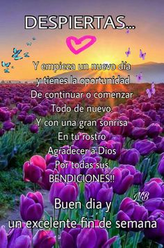 Pin by luz nelsy b on lucy quotes Morning Love Quotes, Good Morning Funny, Morning Greetings Quotes, Good Morning Messages, Good Morning Good Night, Good Night Quotes, Nutrition Education, Spanish Inspirational Quotes, Spanish Quotes