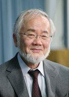大隅氏にノーベル賞=細胞内の「リサイクル」解明―医学生理学2年連続