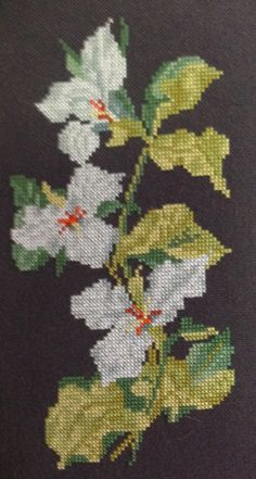 Trillium cross stitch, designed by Helen Burgess, on 14-count black Aida.