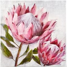 [New] The 10 All-Time Best Home Decor (Right Now) - Home Decor by Melody Boyce - So lovely to see the Protea flower trending through homewares this season Also known as sugarbushes they represent change and hope . Art Floral, Flower Graphic, Graphic Art, Protea Art, Protea Flower, Fleur Protea, Painting Frames, Painting Prints, Paintings