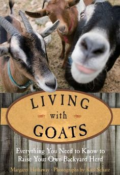 Living with Goats: Everything You Need to Know to Raise Your Own Backyard Herd by Margaret Hathaway. Keeping Goats, Raising Goats, Raising Chickens, Small Goat, Goat House, Goat Care, Paws And Claws, Goat Farming, Baby Goats