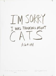 I love cats, I love every kind of cat, I just want to hug all of them, but I can't, can't hug every cat. I'm sorry I was thinking about cats again. I really loove cats. (lol great YouTube video)