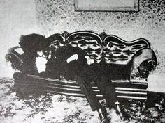 Andrew Borden - Victim #2