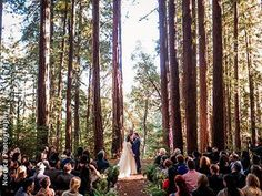 *FAVORITE!* The Sequoia Retreat Center Waterfall Barn Santa Cruz Wedding Venue Ben Lomond California 95005