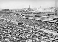 Chicago Stockyards - CTA archives