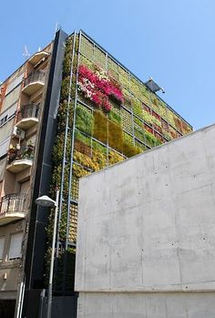 New Green Wall / Jose Maria Chofre ~ Six-Story Vertical garden on the side of a children's library in San Vicente, Eastern Spain