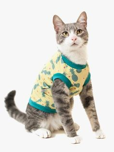 A Camiseta para Gato  - Tropicália Pineapple da Cacau Dress Pet é uma roupa com estampa tropical de abacaxis que vai deixar seu pet citricamente refrescado.