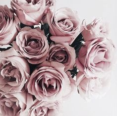 Vintage roses - image via samanthaserena WHI http://weheartit.com