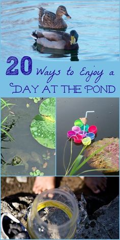 Spend the day at the pond with this FREE printable activity guide & 20 outdoor activities that inspire kids to learn about habitats, animals and water science this summer! - Education and lifestyle Preschool Science Activities, Outdoor Activities For Kids, Nature Activities, Summer Activities For Kids, Science For Kids, Educational Activities, Preschool Activities, Science Nature, Outdoor Learning