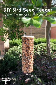 Make your own DIY Bird Seed Feeder from an upcycled Pringles can! Fun craft for kids!