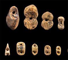 jewellery vogelherd-Jewellery found at the Vogelherd site.