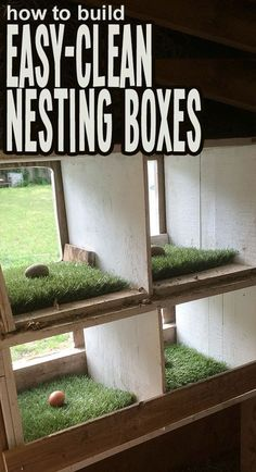 How to create a safe, comfortable, and easy to clean nesting box in your chicken coop.