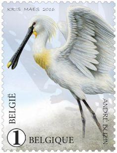 Stamp: Spoonbill (Platalea leucorodia) (Belgium) (Zwin Nature Park) Mi:BE 4651,Yt:BE 4575,Bel:BE 4605