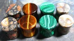 Stone plugs set. Four pairs only $32! Tigers eye, Leopard skin jasper, green malachite and coral fossil.