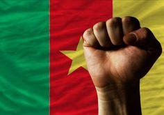 Le #Cameroun devance le Rwanda et la Côte d'Ivoire en matière de matière de connectivité mobile #Team237