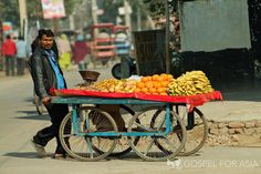 Selling fruit to earn a living