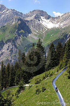 The REAL Alpine Slide going down the Swiss Alps.