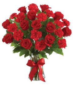 send to albania mixed bouquet 8 carnations & 7 roses buqete mix all flowers will be delivered with speacial gift wrapping and you may also add a speacial message for the recepient by entering your message in the provided box below. Beautiful Bouquet Of Flowers, Send Flowers, All Flowers, Best Online Flowers, Red Carnation, Cheap Flowers, Flowers Delivered, Rose Bouquet, Flower Bouquets