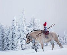 The Christmas Wish | Lori Evert, Per Breiehagen