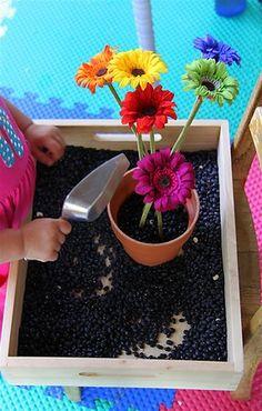 Sensory Boxes --- Flower arranging sensory box w/ black beans, flower pot, trowel, and silk flowers. Sensory Tubs, Sensory Boxes, Sensory Activities, Sensory Play, Motor Activities, Preschool Garden, Preschool Classroom, Classroom Themes, Kindergarten