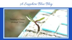 Thriving in these Unusual Times – Sapphire Blue Travel Tough Day, Ways To Communicate, Another World, We The People, How To Stay Healthy, Blue Sapphire, Family Travel, Mindset, Travel Inspiration