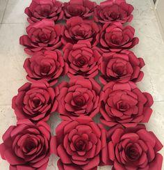 Red paperflower