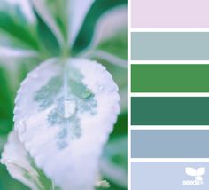 THE GREEN color palettes
