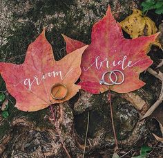 We love this super cute photo idea for a #fallwedding!