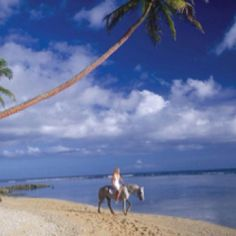 Has your dream vacation included horseback riding on a beach? It's possible in Fiji at Namale Resort & Spa